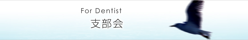 支部会 For Dentist